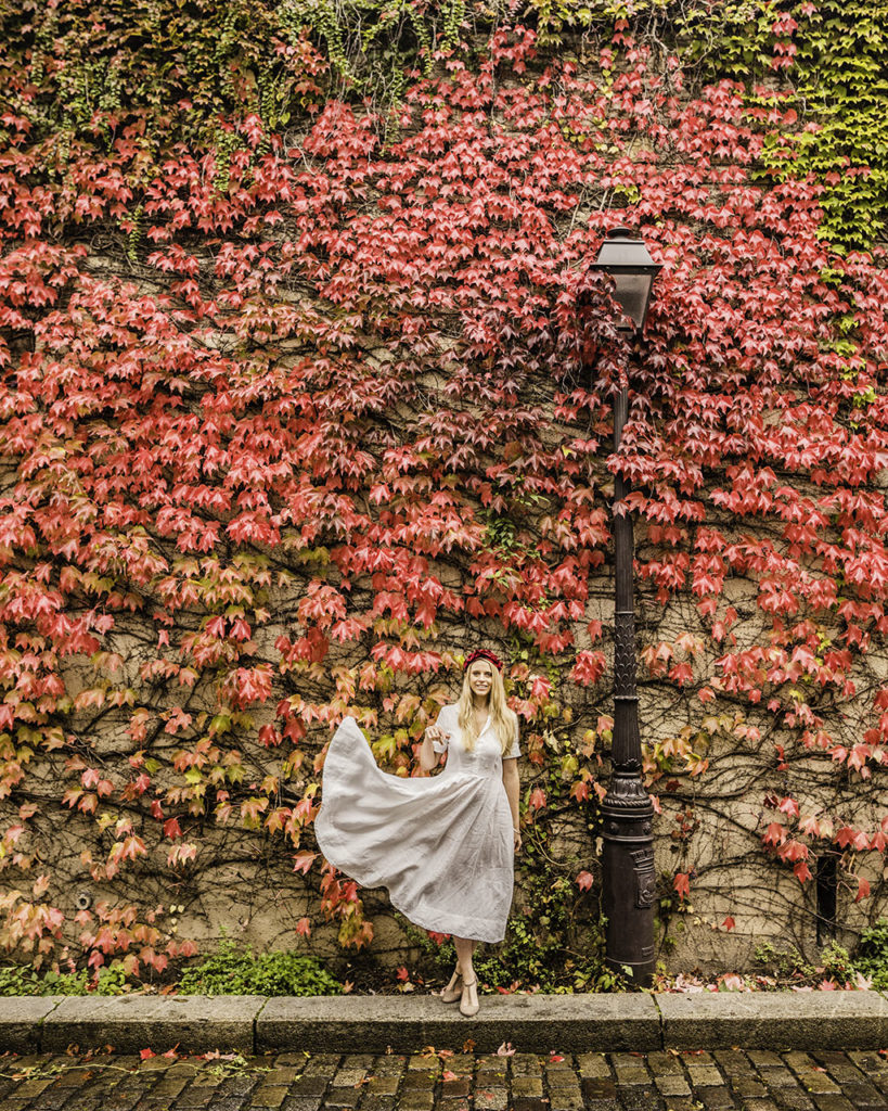Paris in autumn - Ivy wall in Montmartre