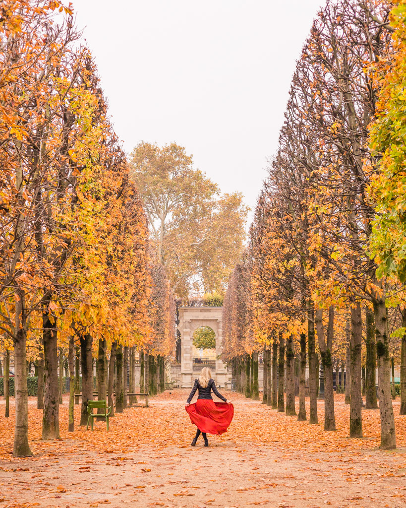 Tuileries Garden in fall in Paris