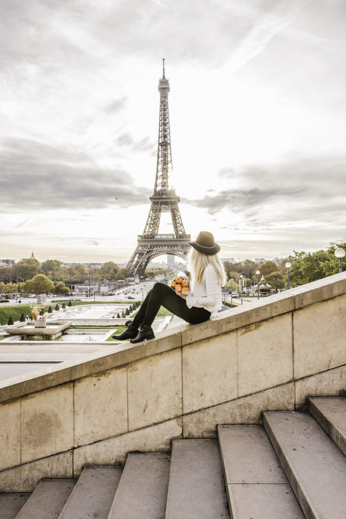 Paris in autumn - Eiffel Tower from the stairs at Trocadero