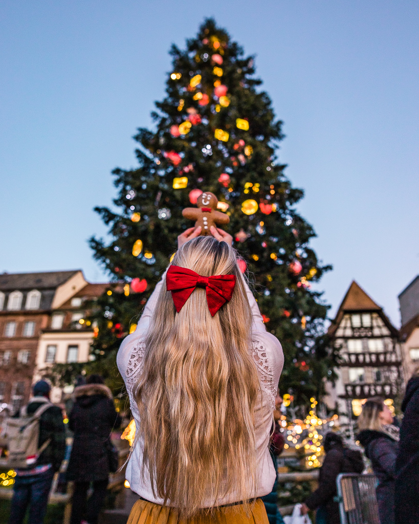 Christmas tree in Strasbourg - Alsace