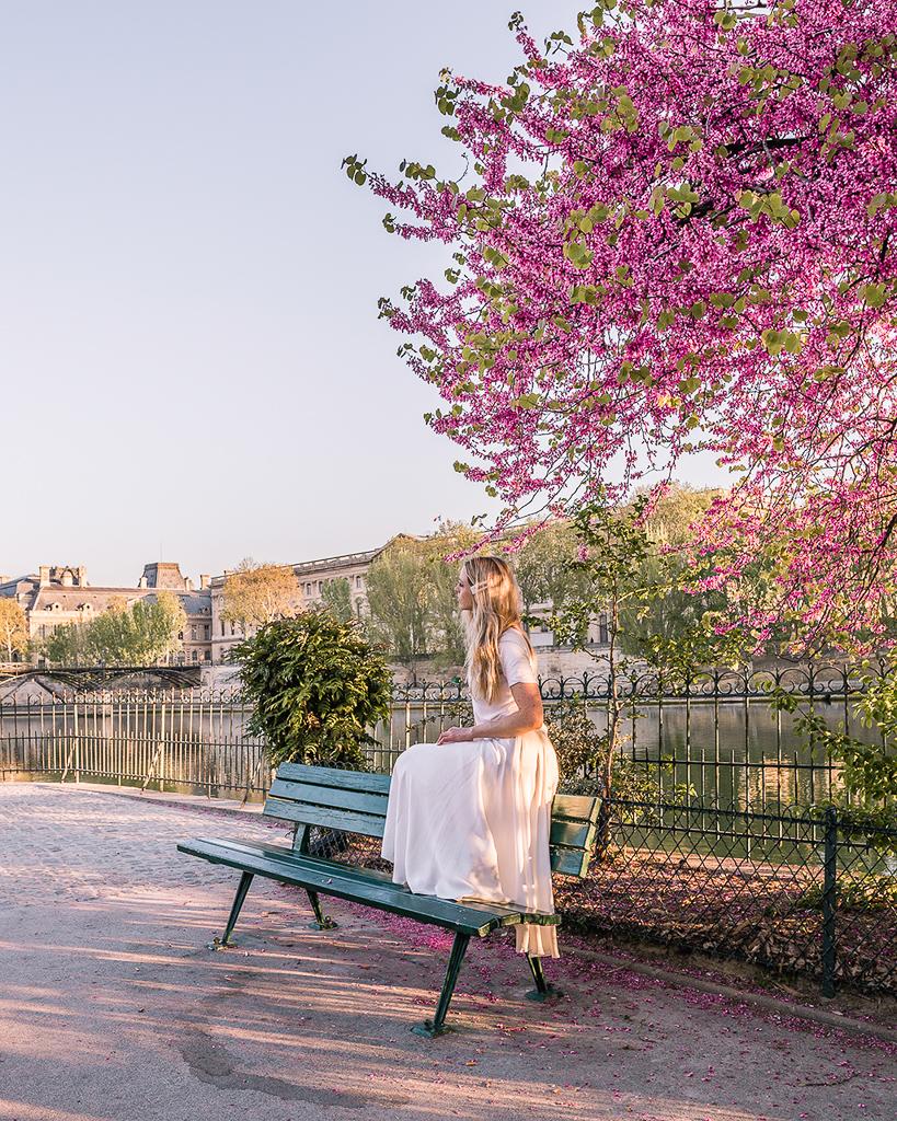 Square du Vert-Galant - Paris