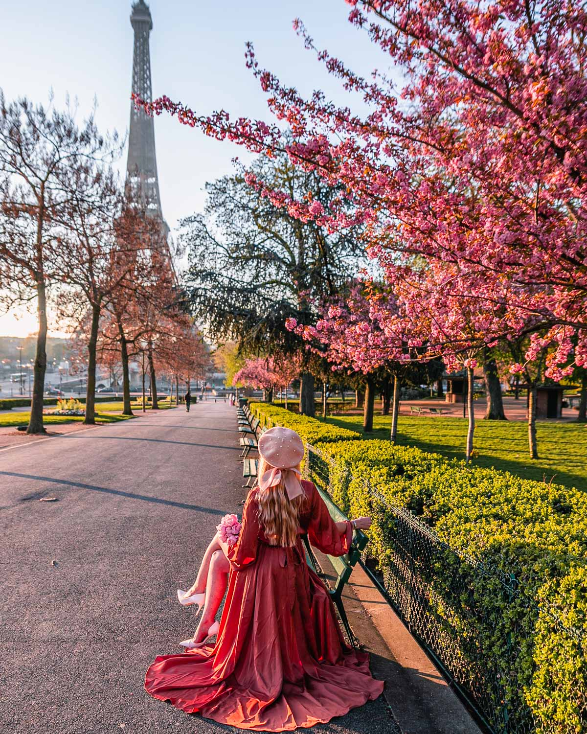 Cherry blossoms at the Eiffel Tower - Paris